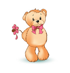 romantic teddy bear and flower vector image