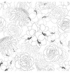 rose chrysanthemum carnation peony and amaryllis vector image