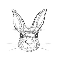 Vintage graphic rabbit print vector