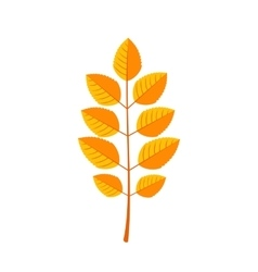 Autumn Leaves icon in flat style vector image vector image