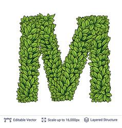Letter m symbol of green leaves vector