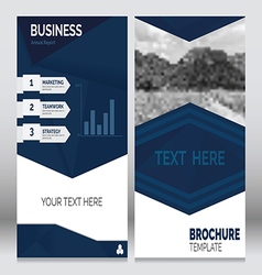 Brochure Template5 vector image