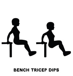 Chair bench triceps dips sport exersice vector