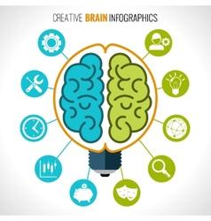 Creative brain infographics vector image