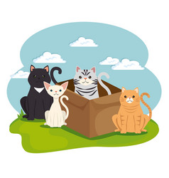 Cute cats pets in landscape characters vector
