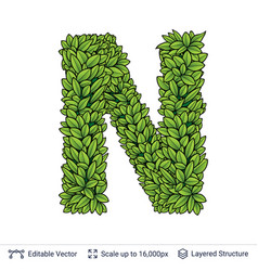 Letter n symbol of green leaves vector
