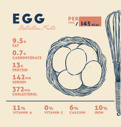 nutrition fact of egg hand draw sketch vector image