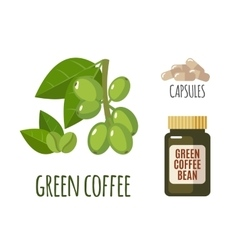 Superfood green coffee set in flat style vector image
