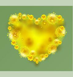 Yellow mimosa flowers heart shape on green vector