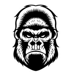 Gorilla Head BW vector image