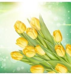 Bunch of fresh yellow tulips eps 10 vector