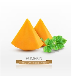 pumpkin slices isolated on white background vector image vector image