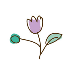 watercolor hand drawn silhouette of tulip flower vector image