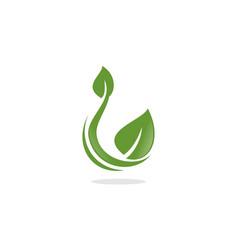 natural leaf logo vector image