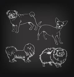 sketch of set dogs on blackboard vector image