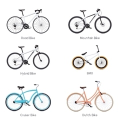 Bicycles set vector