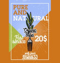 color vintage organic food banner vector image