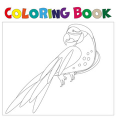 Coloring pages parrot vector