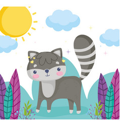 cute animals little raccoon grass plants leaves vector image