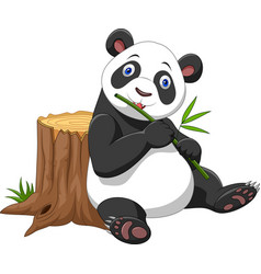 cute panda cartoon vector image