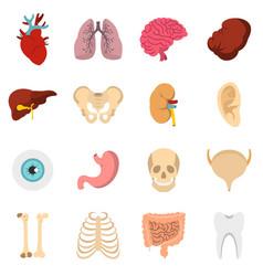 human organs set flat icons vector image
