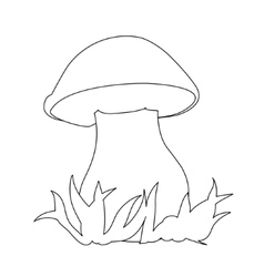 Image porcini can be used for coloring book vector