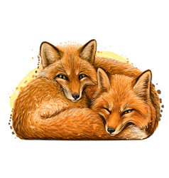 little foxes wall sticker vector image