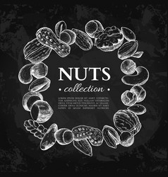 Nuts vintage frame hand drawn vector