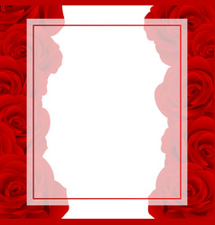 red rose banner card border vector image