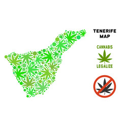 Royalty free marijuana leaves composition tenerife vector