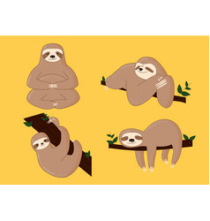 sloth poses cartoon vector image