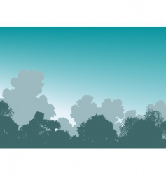 woodland treetops vector image