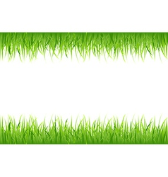 Grass On White Background vector image