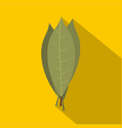 Bay laurel leaves icon flat style vector