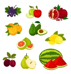 Fresh fruits isolated icons set vector