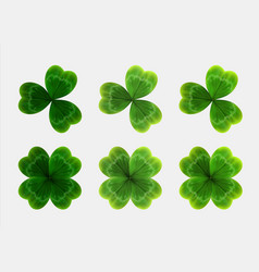 set green leaves clover realistic vector image