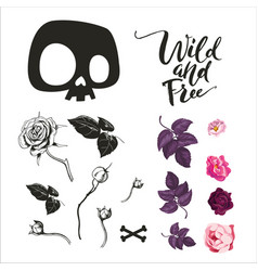 skull and flowers collection vector image