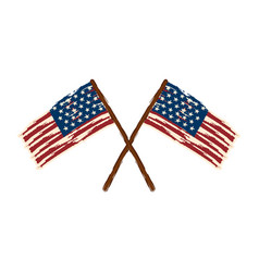 textured flags of united states vector image