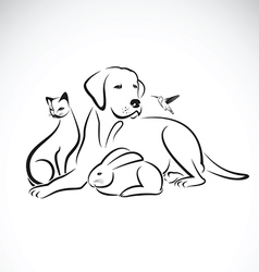 Group of pets on white background vector image vector image