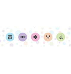 5 ornament icons vector