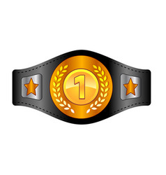 Champion belt box award sport icon flat web sign vector