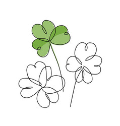 continuous line drawing shamrock leaves bouquet vector image