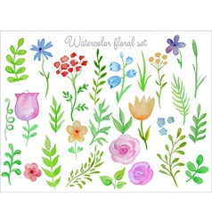 Floral set Colorful floral collection with leaves vector