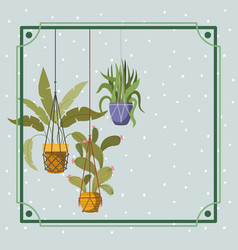 Frame with houseplants hanging in macrame vector