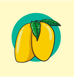 fresh mangoes vector image