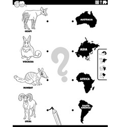 match animals and continents task coloring book vector image