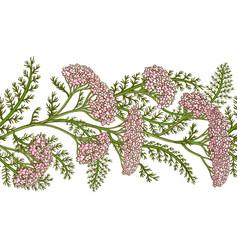 milfoil pattern vector image
