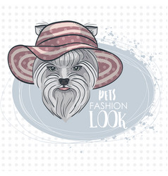Pets fashion look vector