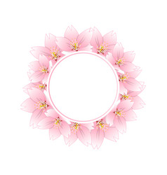 sakura cherry blossom banner wreath vector image