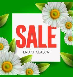 summer sale lettering and bouquet realistic daisy vector image